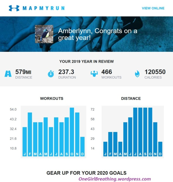 Charts reviewing my total workouts and distance for 2019 as provided by Map My Run